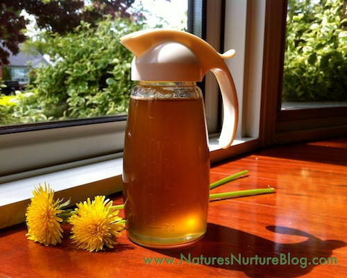 dandelion syrup