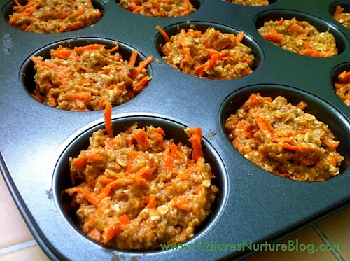 carrot-oat coconut muffins