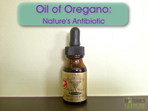 Oil of Oregano - Nature's Antibiotic