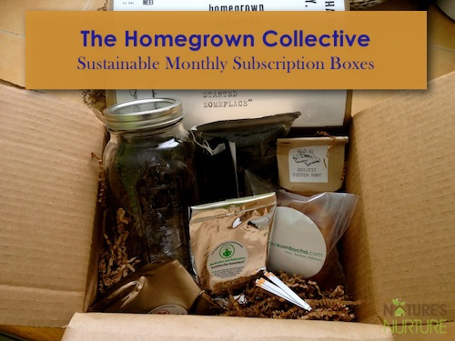 The Homegrown Collective Review