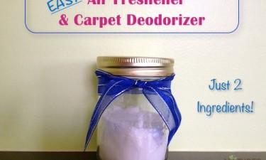 Easy Air Freshener & Carpet Deodorizer