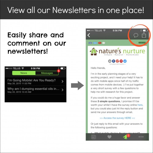 Newsletter Screenshot