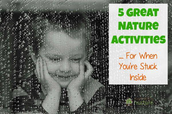 Nature Activities When Stuck Inside