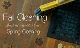 5 Reasons Fall Cleaning is Just As Important As Spring Cleaning