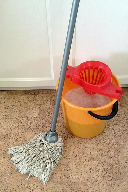 Homemade Floor Cleaner Tips Amp Tricks Nature S Nurture