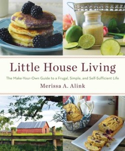 little-house-living-9781501104268_lg