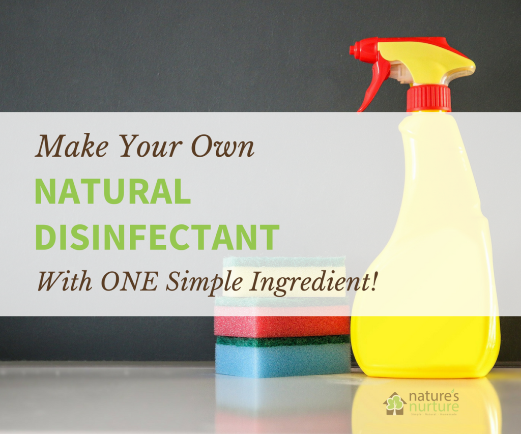 Ditch the bleach and toxic fumes, and learn how to make this natural disinfectant with a simple ingredient you probably already have in your kitchen!