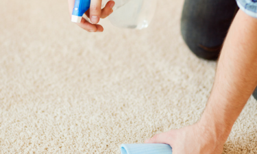 Non-Toxic Carpet Stain Remover Guide for (Almost) Any Stain!