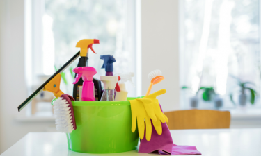 Switching to Non-Toxic Cleaning Products
