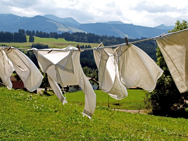 How to Naturally Freshen Your Laundry Without Harmful Chemicals