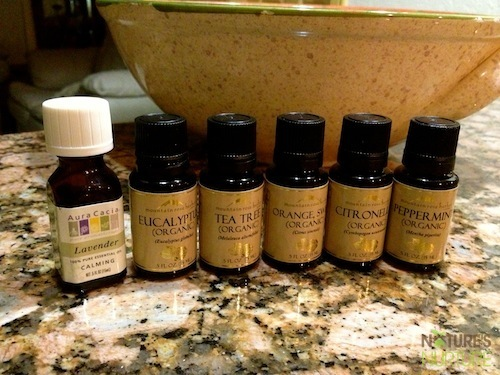 Essential Oils Beginners Guide