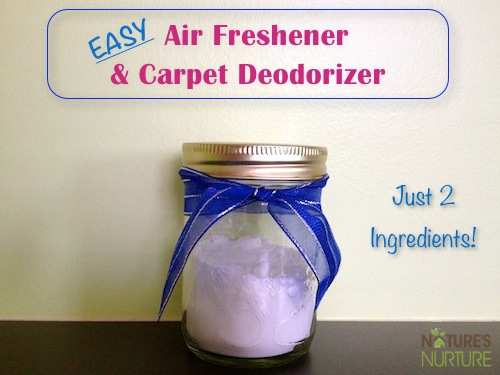 Easy Air Freshener & Carpet Deodorizer