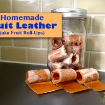 Homemade Fruit Leather (aka Fruit Roll-Ups)
