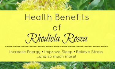 The health benefits of Rhodiola rosea can increase energy, improve sleep, relieve stress, and so much more! Find out what else this amazing adaptogenic herb can do for your overall health!